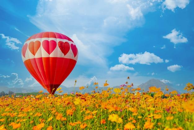 Красочный полет на воздушном шаре в природном парке и саду. активный отдых и путешествия по тайланду.