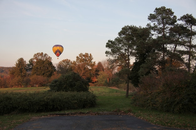 Colorful hot air balloon in the sky over the trees and the grass-covered fields