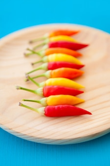 Colorful hot chili peppers in a row on plate