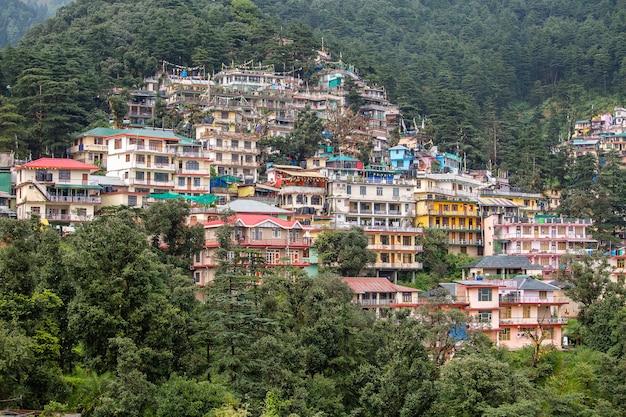 인도 다람살라의 히말라야 산맥에 있는 다채로운 집과 푸른 소나무 숲. 소나무 나무와 배경에 집