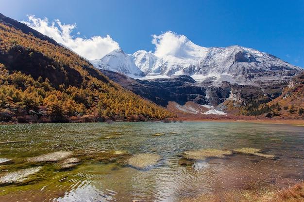 Красочный осенний лес и снежная гора в заповеднике ядин, последний шангри-ла