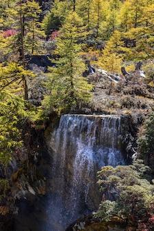 Красочный осенний лес и снежная гора в заповеднике ядин последний шангри-ла