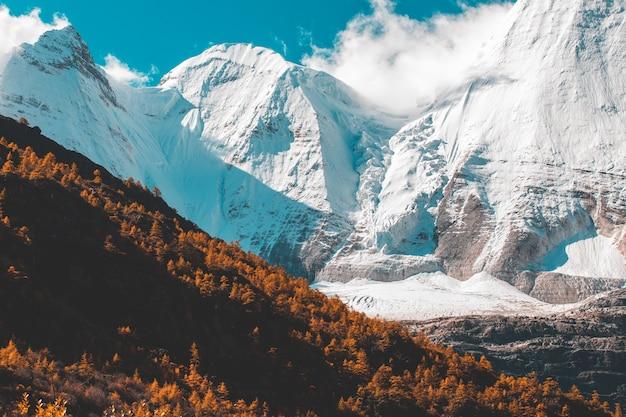 ヤディン自然保護区の秋の森と雪山でカラフルな最後のシャングリラ