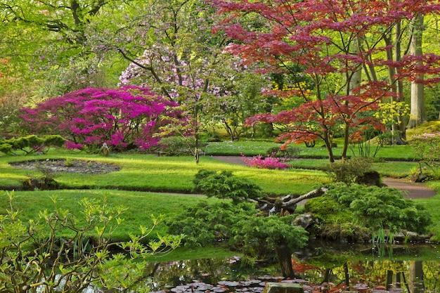 Colorful japanese garden in spring, den haag, holland