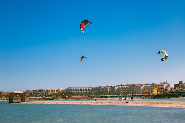 Colorful kites soaring over the red sea shoreline.
