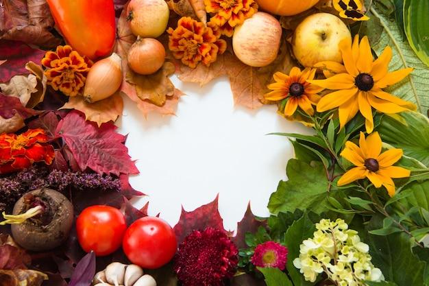 白い背景の上のカラフルな葉と野菜
