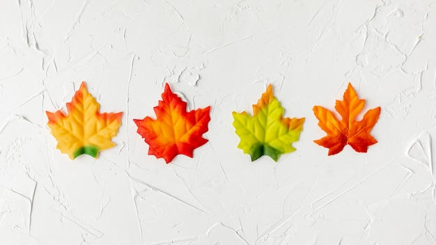 Colorful leaves arrangement on white background