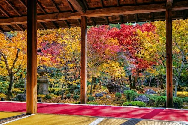 日本の秋の公園の色とりどりの葉。