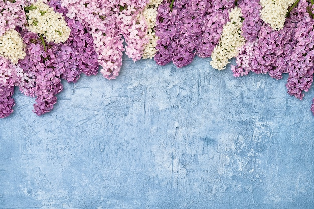 Colorful lilac flowers on light blue background. top view, copy space. spring