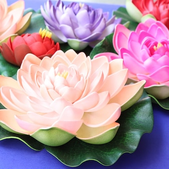 Colorful lotus flowers background