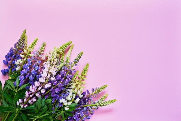 Красочный букет цветов люпина на розовом. вид сверху, копия пространства.