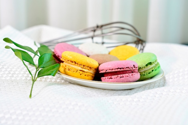 Colorful macaroons cakes
