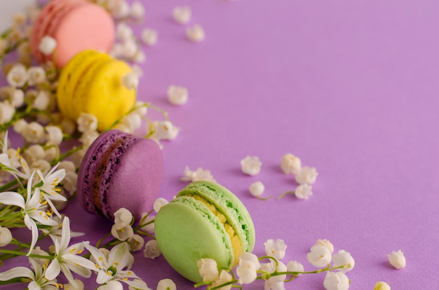 Colorful macaroons decorated with blooming lily of the valley on purple. sweet french dessert concept. frame composition. flat lay. copyspace. greeting card concept