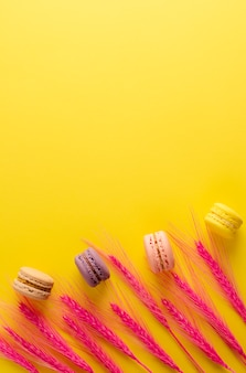 Colorful macaroons and decorative pink spikelets on bright yellow background. copyspace. vertical. flat lay, overhead.