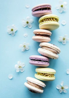 Colorful macaroons  and spring blossom arranged over blue surface