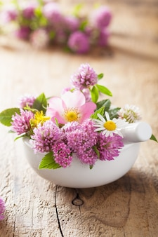 Красочные лечебные цветы и травы в ступке
