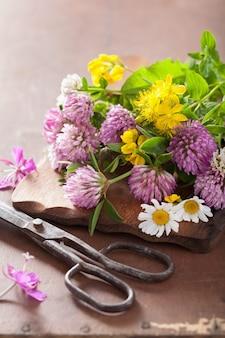 Красочные лечебные цветы и травы
