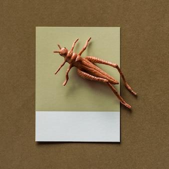 Colorful miniature grasshopper on a paper