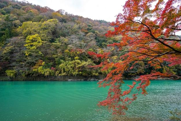 青空と雲、日本に対する秋のカラフルな山。