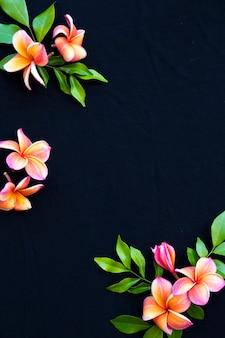 カラフルなオレンジ、ピンクの花フランジパニブラック