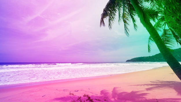여름 화창한 날에 열대 섬에 있는 실루엣 야자수의 다채로운 파스텔 색상.