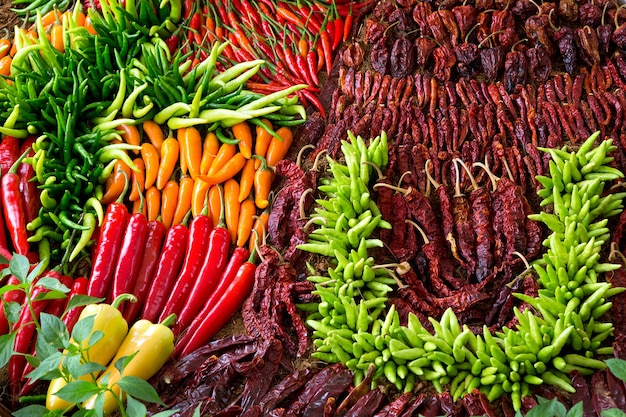 Colorful patterns of peppers for cooking.