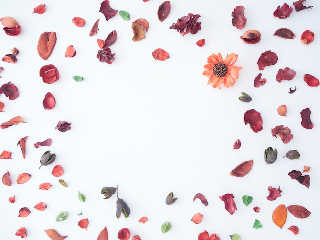 Colorful petal of dried flowers potpourri background.