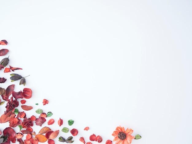 ドライフラワーポプリ背景のカラフルな花びら。