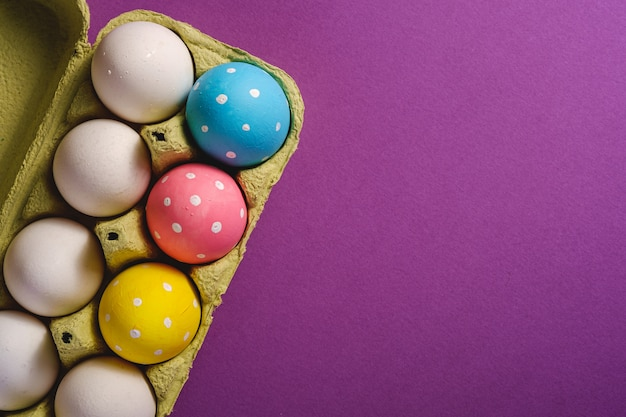 Colorful polka dot easter eggs in egg tray on purple violet plain background, greeting card, copy space, top view