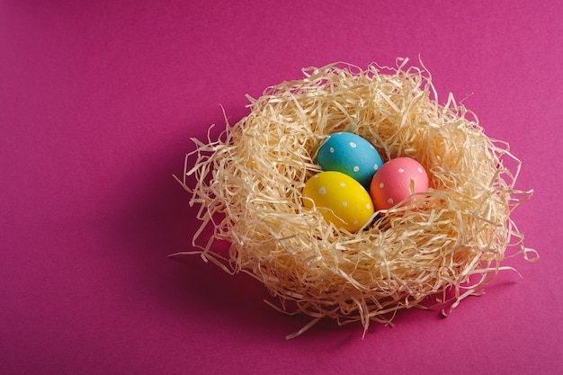 Colorful polka dot easter eggs in wooden nest on pink purple plain background,