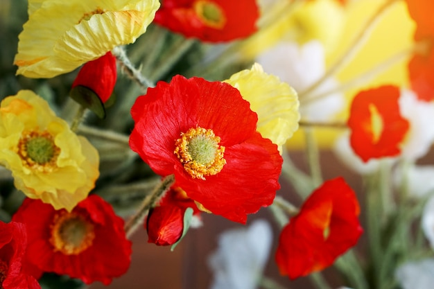 Colorful poppy in the vase decorate in the room