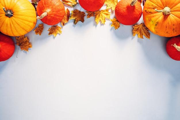 복사 공간이 있는 할로윈 배경을 위해 햇빛에 화려한 호박과 낙엽