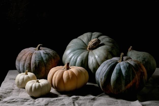 カラフルなカボチャのコレクションは、リネンのテーブルクロスにさまざまなサイズと品種があります。暗い静物。秋の収穫。