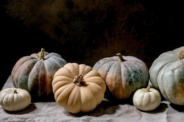 다채로운 호박 컬렉션은 리넨 식탁보에 다양한 크기와 품종을 제공합니다. 어두운 정물화. 가을 수확.