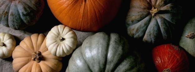 カラフルなカボチャのコレクションは、リネンのテーブルクロスにさまざまなサイズと品種があります。フラットレイ。秋の収穫。バナーサイズ
