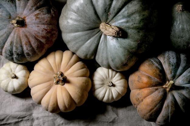 カラフルなカボチャのコレクションは、リネンのテーブルクロスにさまざまなサイズと品種があります。フラットレイ。秋の収穫。