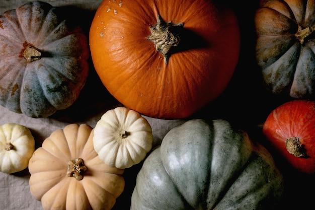 다채로운 호박 컬렉션은 리넨 식탁보에 다양한 크기와 품종을 제공합니다. 플랫 레이. 가을 수확.