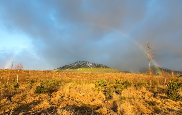산에 회색 흐린 하늘 배경에 화려한 무지개.