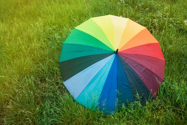 Colorful rainbow umbrella on green grass. spring time.