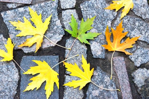 다채로운 빨강, 주황 및 녹색 단풍이 돌 패턴에 있습니다. 가을 배경