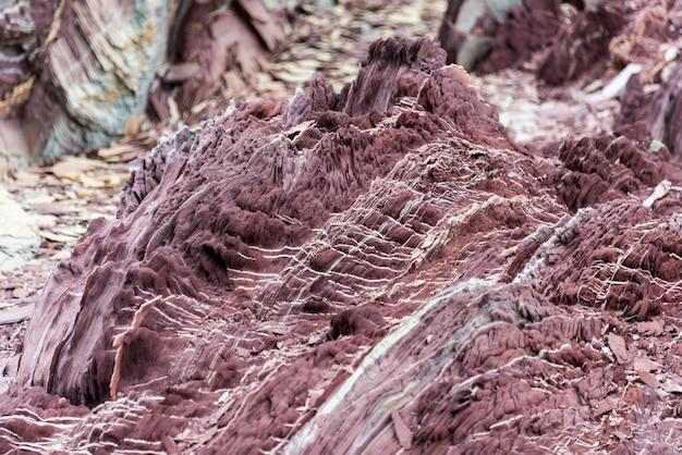 東グリーンランドのカラフルな岩をクローズアップ。