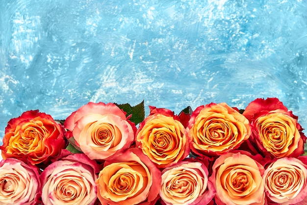 Colorful roses bouquet on abstract blue background