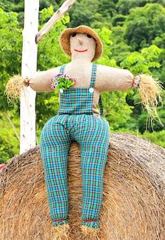 Красочное чучело одета в одежду в саду