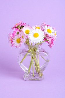 Colorful small bouquet of tender daisies.