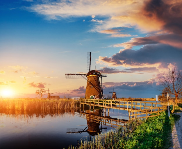 Colorful spring day with traditional dutch windmills canal