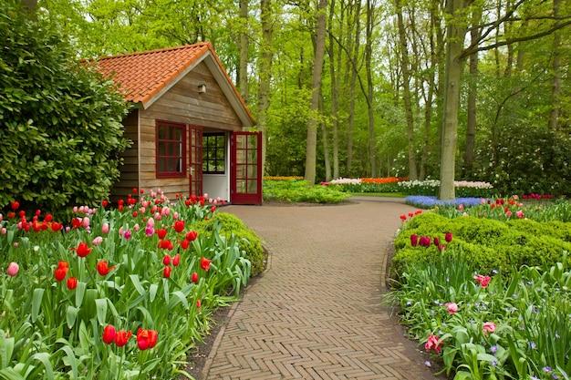 Colorful spring flowers in dutch  garden keukenhof in holland