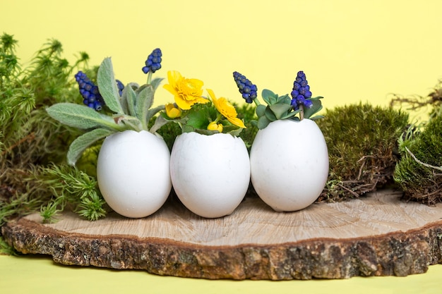 Colorful spring flowers in egg shell flowerpot on wooden podium