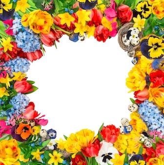 カラフルな春の花。チューリップ、水仙、ヒヤシンス、パンジーの花