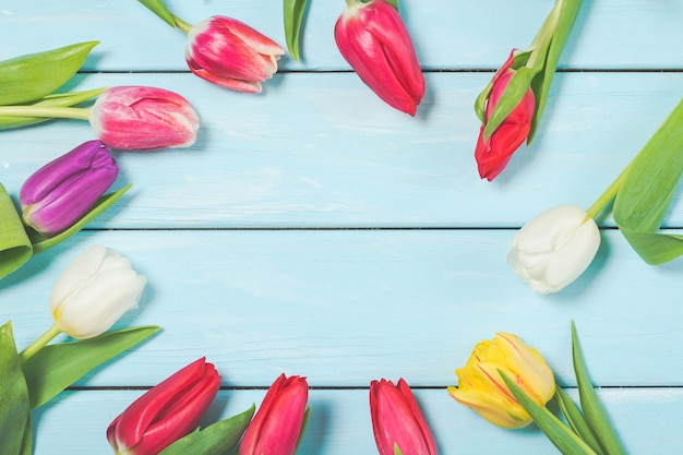 Colorful spring tulip flowers on light blue wooden background