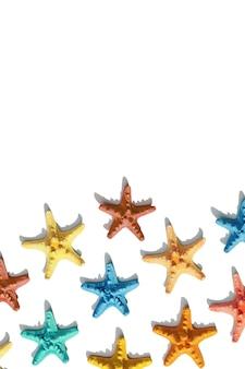 바다 생활의 흰색 해상 또는 해양 테마에 다채로운 불가사리 패턴